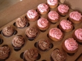 chocolate-and-vanilla-cupcakes-jpg
