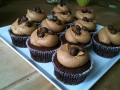mocha-cupcakes-with-milk-chocolate-frosting-and-chocolate-coffee-beans-jpg